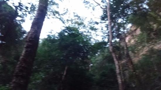 Bocaina Falls: Foto tirada da base da cachoeira