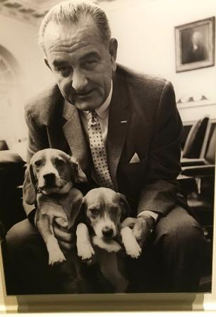 Johnson and his twin beagles, Him and Her