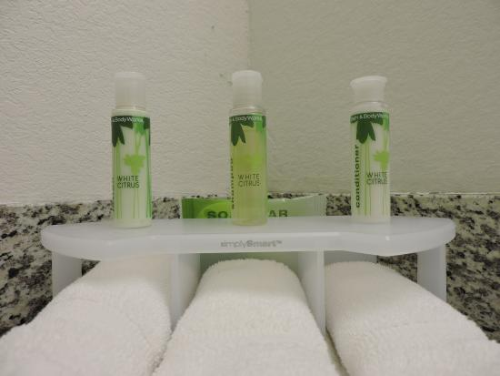 Montgomery, Nova York: Bathroom Amenities