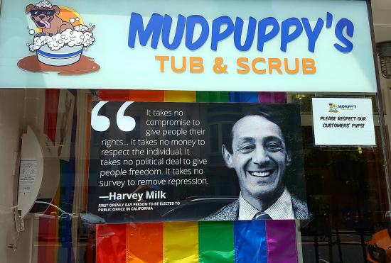 Cruisin' The Castro Walking Tours: Harvey Milk Quote at Mudpuppy's
