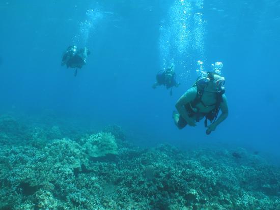 Ka'anapali, Hawái: The group