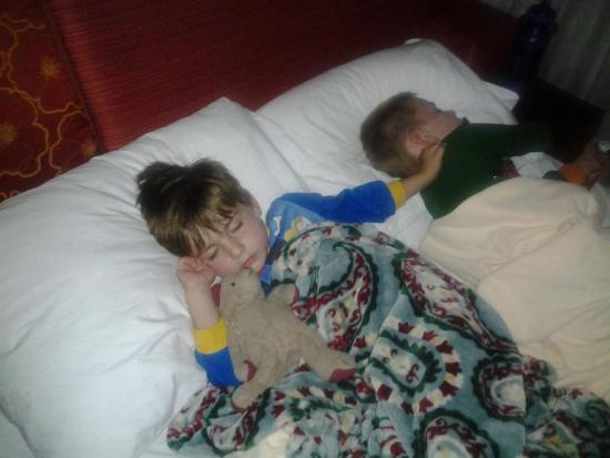 Чандлер, Аризона: Sofa bed was perfect size for our 2 little guys.