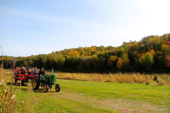 Cross Plains, WI: Haywagon ride with the beautiful fall colors