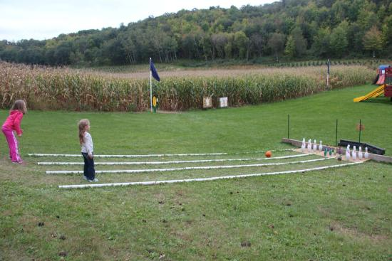 Cross Plains, WI: Pumpkin Bowling and corn maze nearby