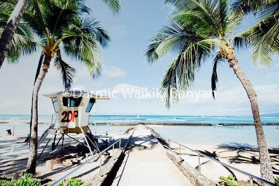 Darmic Waikiki Banyan: Waikiki Beach only 3 mins walk away
