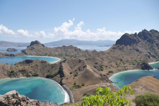 Image result for Pulau padar