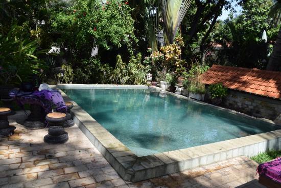Bondalem, Indonezja: Pool area