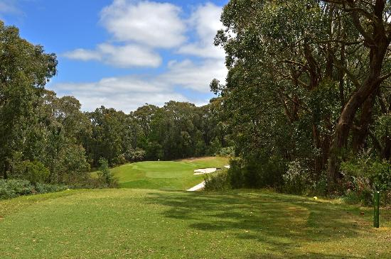 Leongatha, Australia: 16th Hole Tee Shot