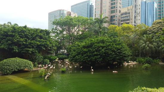 카우룽 공원