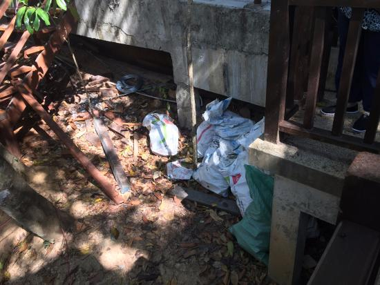 Пулау-Гая, Малайзия: Trashbags under a neighboring unit.