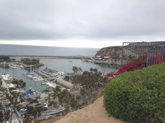 Dana Point, CA: Bluffs looking out to harbor