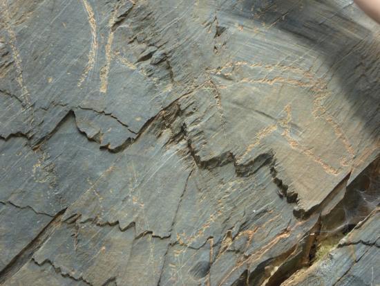 Province of Salamanca, Spanyol: Detalle grabado rupestre