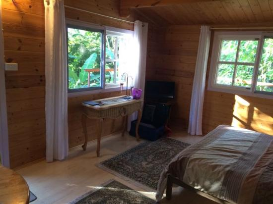 Mt Warning Bed and Breakfast Retreat: The cabin has four big windows, as well as nice furniture and rugs.