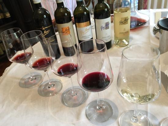 Castiglione Falletto, Italia: Educational tour with amazing wines