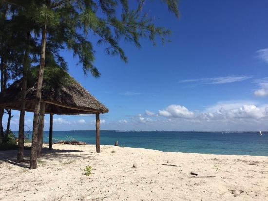 Mbudya island: photo0.jpg