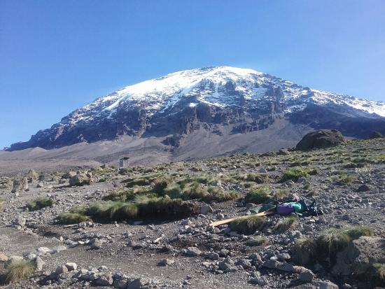 Arusha, Tanzania: Mount Kilimanjaro view