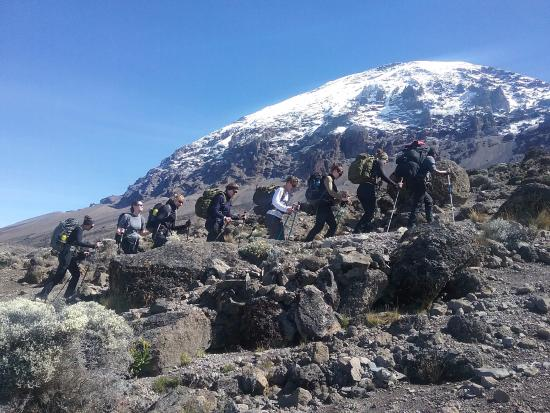 Arusha, Tanzania: Trekking Kilimanjaro Machame