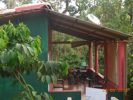 Mani Mansion: The cottage in the coffee estate