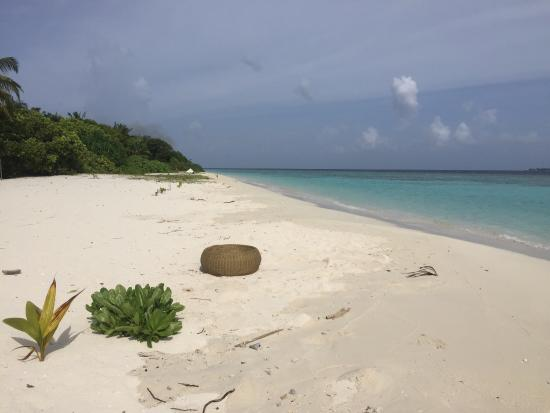 Omadhoo Island: photo5.jpg
