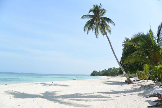 Lambug Beach Homestay Badian Cebu Island Hostel Reviews Photos Rate Comparison Tripadvisor