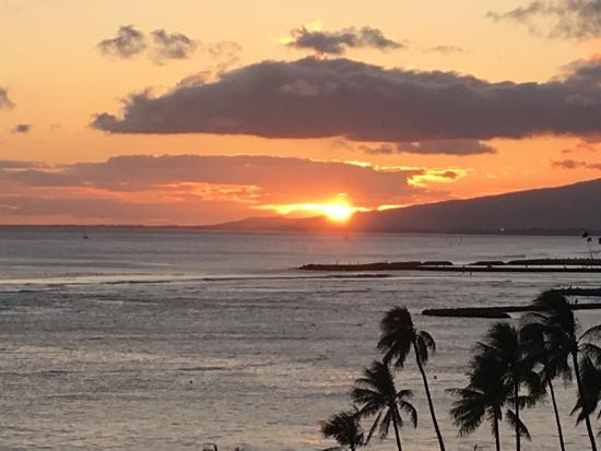 Waikiki Shore: photo6.jpg