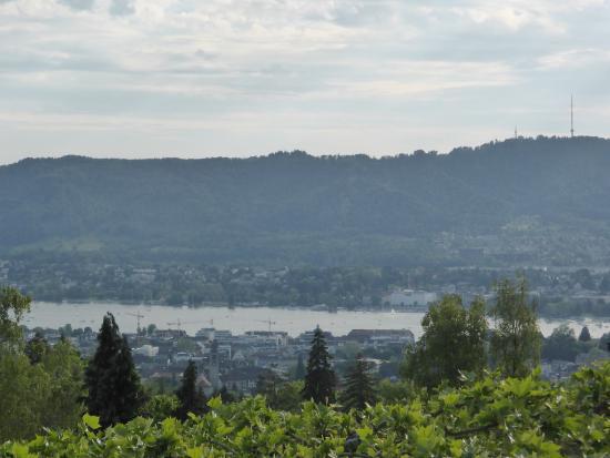 Zürih, İsviçre: Aussicht auf den See