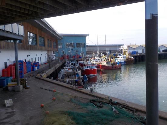 Working fish harbour