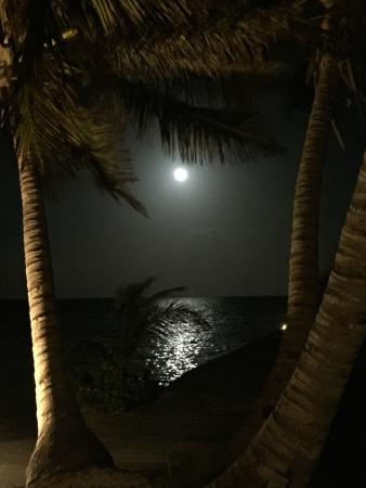 Belizean Cove Estates: Moon over the beach
