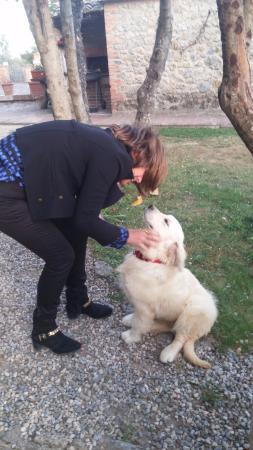 Casale Virgili: Esta cadelinha mora no hotel e era bebê quando nos hospedamos. Já deve estar grande