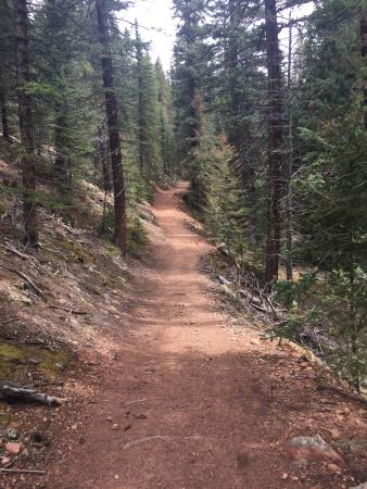 Pine, CO: Mason Creek Trail