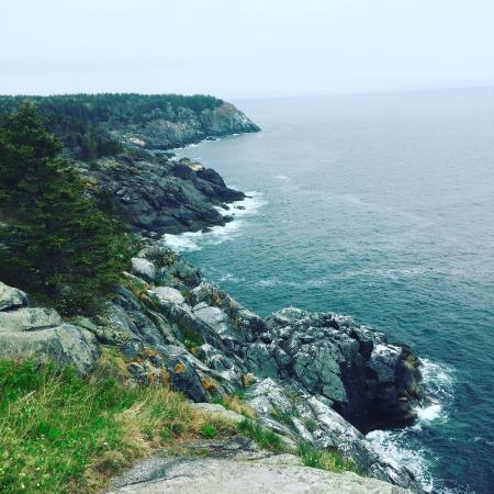 Остров Моньеган, Мэн: Monhegan Island, Whitehead trail, May 2016