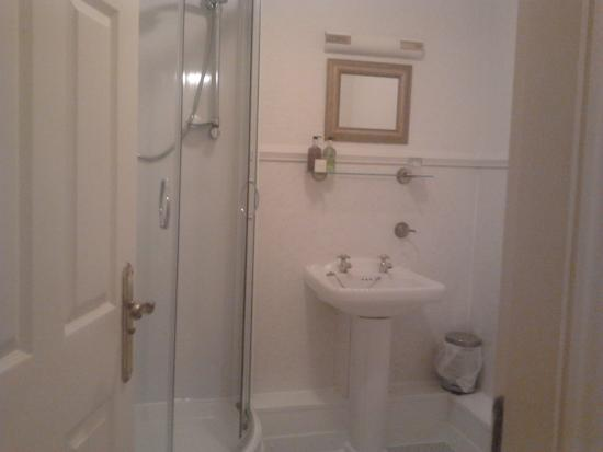Kingslodge Hotel: The bathroom with a shower cubicle
