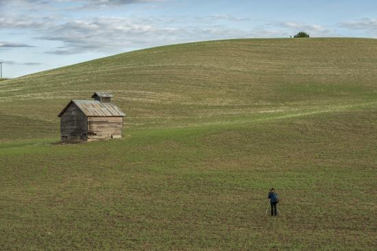 Best Western Wheatland Inn: Palouse country - Photgrapher's Paradise