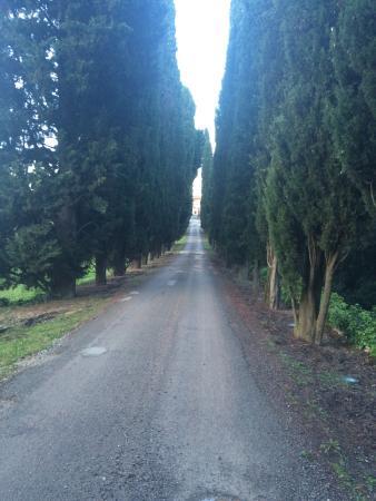 Vagliagli, Italia: photo3.jpg
