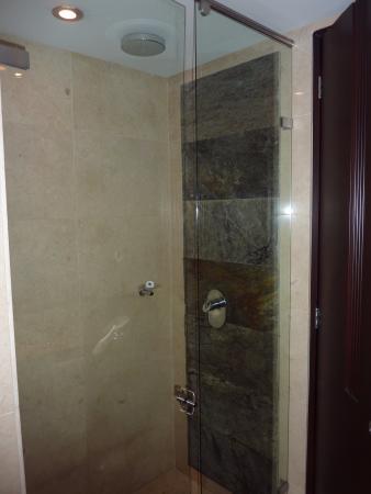 BEST WESTERN PLUS 93 Park Hotel: El Baño con una ducha de diseño y limpia