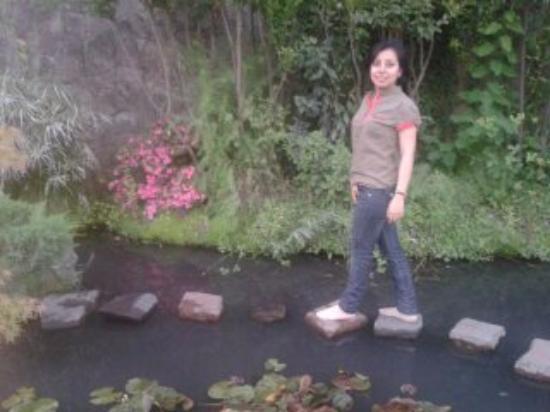 jardin japones pequeo caminito hay flores de loto al otro extremo es