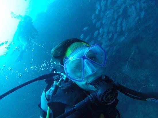 Bophut, Thailand: Diving in Sail Rock. Thailand