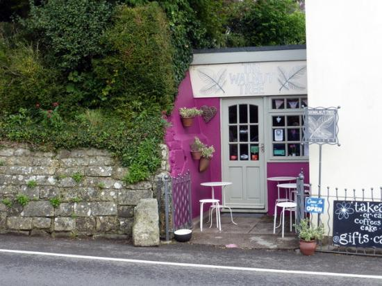 Sixpenny Handley, UK: Tiny shop with tasty offerings