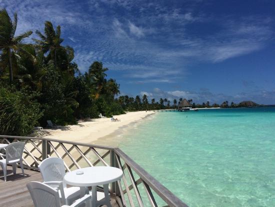 Safari Island: Flitterwochen September 2015