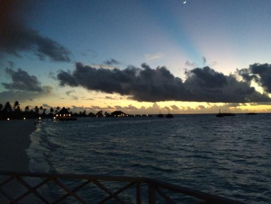 Safari Island: photo3.jpg