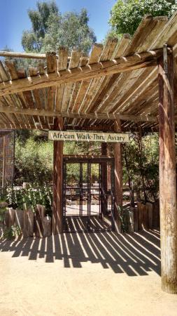 Litchfield Park, AZ: The walk-through aviary entrance.