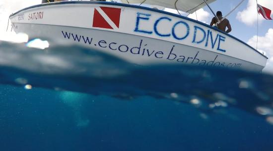 Eco Dive Barbados: The Satori just before our descent!