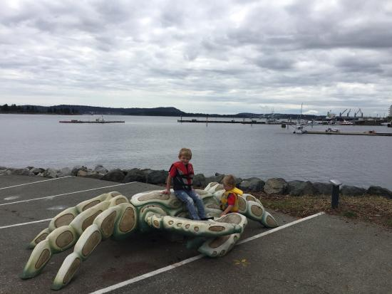 Nanaimo, Canada: Great walk for the family. There is a brilliant little park for young children.