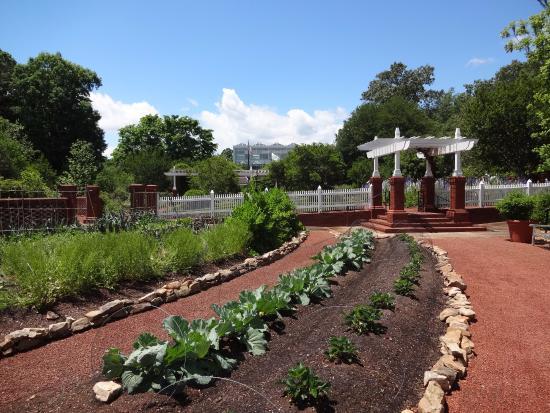 Athens, GA: gardens