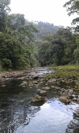 Braulio Carrillo National Park, คอสตาริกา: El recorrido es hermoso.