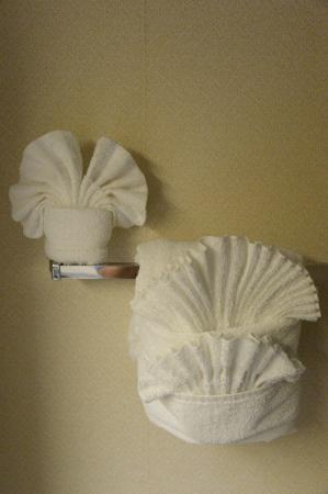 Comfort Inn Airport/International Center: Le pliage des serviettes dans la salle de bain... magnifique !