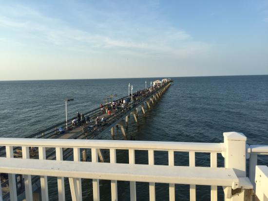 Relaxing views of the beach picture of ocean view for Ocean view fishing pier