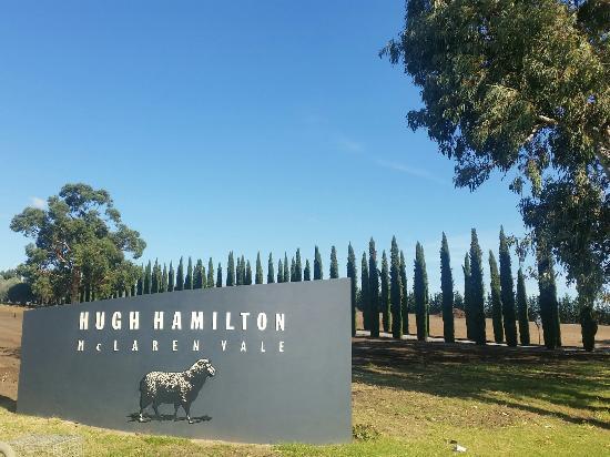 McLaren Vale, Australia: 20160524_125203_large.jpg