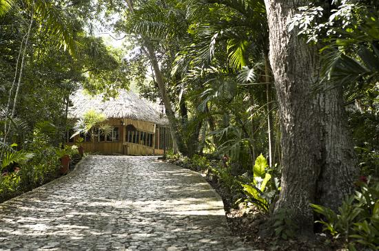Photo of Jungle Lodge Tikal National Park