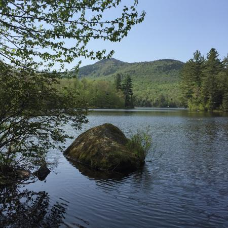 Leffert's Pond: Great place for wildflowers and hiking.